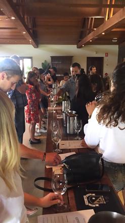 People tasting wines in winery