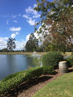 Lake at Cyress Lakes winery