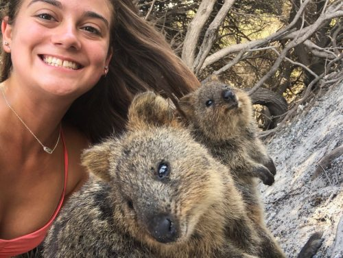girl with quokkas